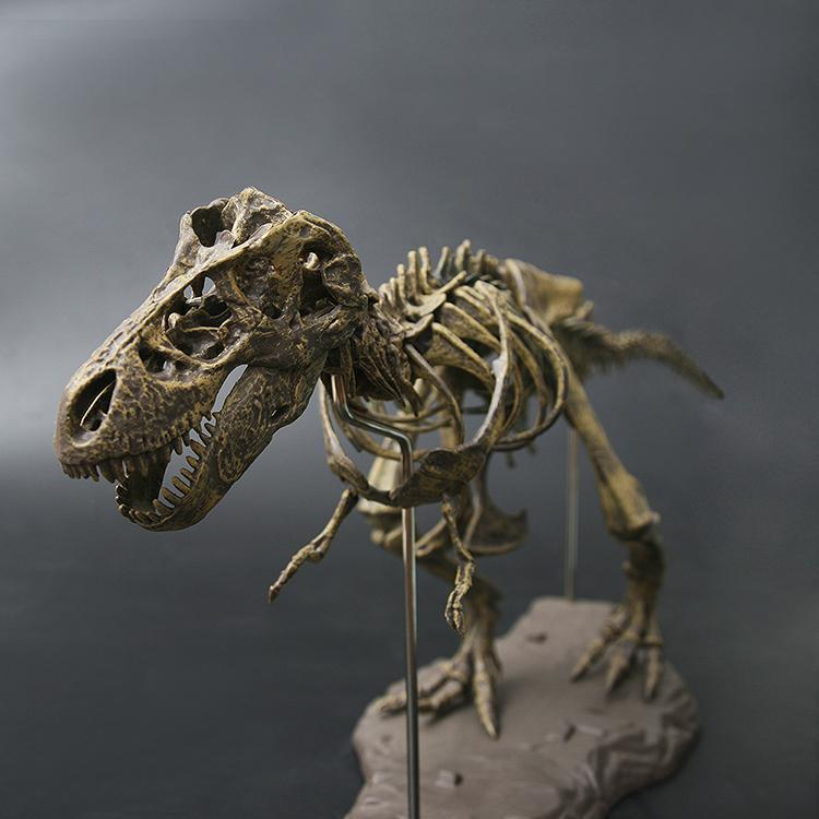 DIY T-Rex Skeleton Model For Gift/Decoration play with kids