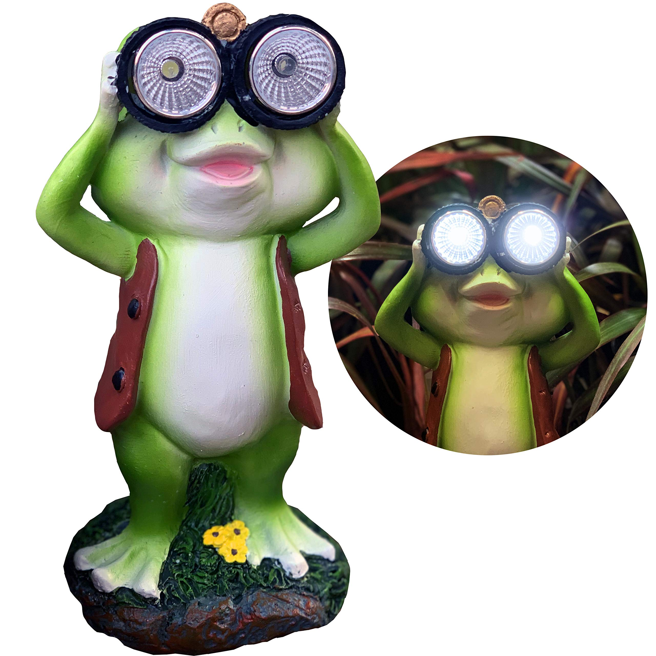 New Solar Frog Lawn Ornament - Limited Edition 'Freddy The Explorer'