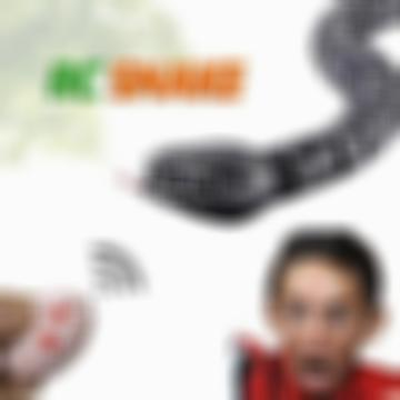 [50% OFF]Remote Control Rattle Snake Toy