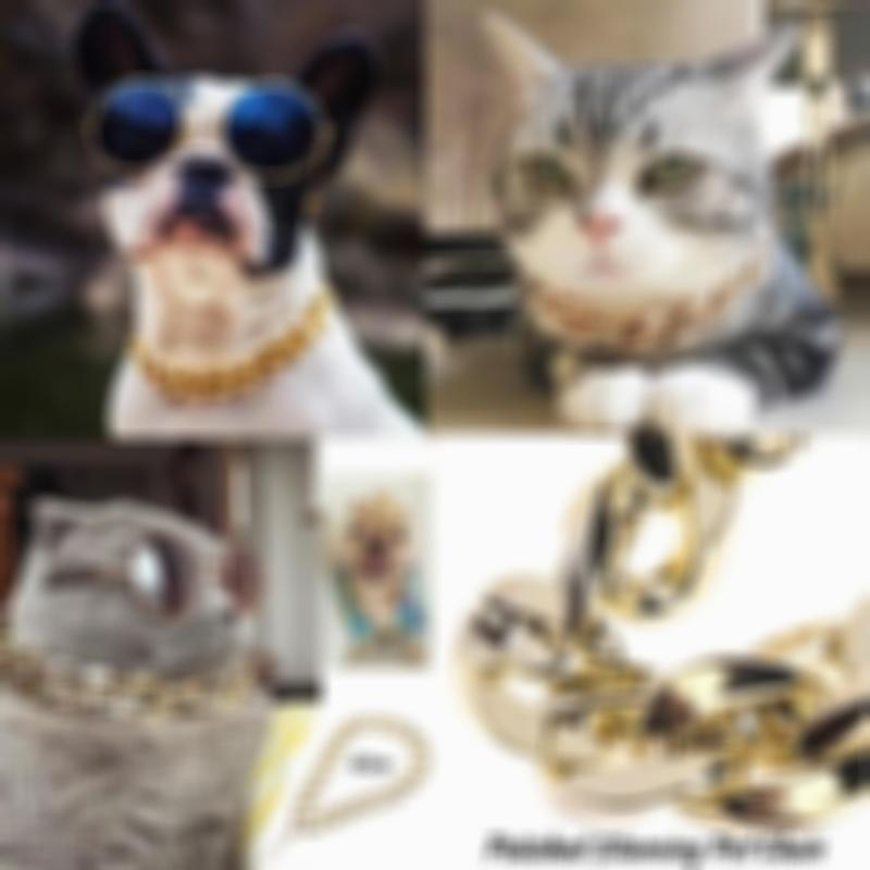 Adjustable Stainless Steel Gold Pet Safety Collar for Dog/Cat