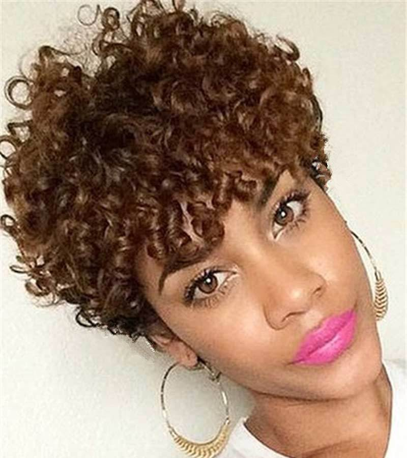 Luna 010 Gorgeous Curly Short Afro Hair Wig for African American Women