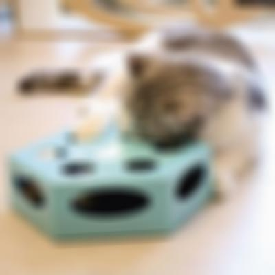 SKRTEN Rotating Feather Electronic Interactive Cat Play Toy
