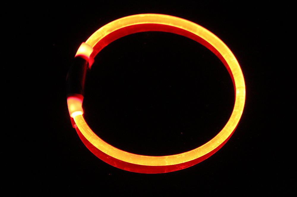 LED Dog Collar USB Rechargeable Available in 6 Colors &5 Sizes - Makes Your Dog Visible, Safe & Seen