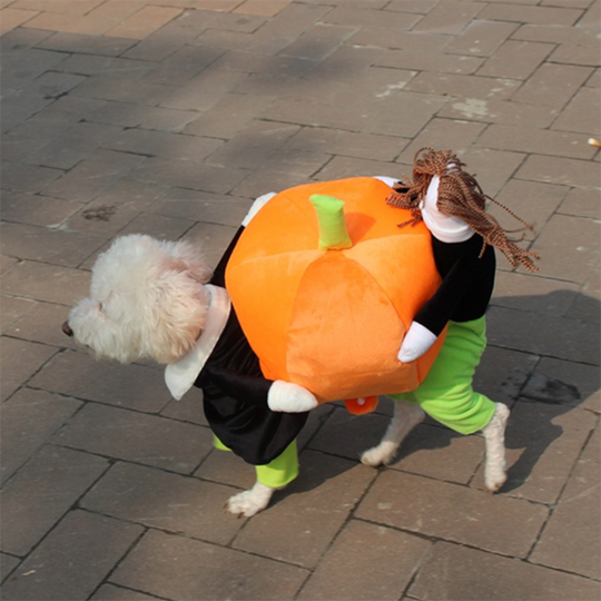Pet Halloween costumes-BUY 2 FREE SHIPPING