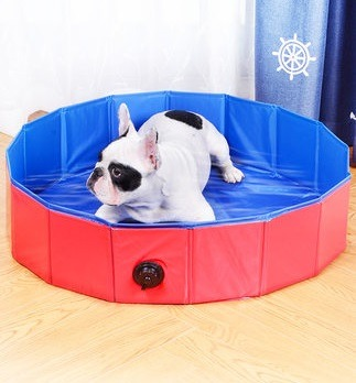 💥Early Summer Hot Sale 50% OFF💥 PORTABLE PAW POOL & BUY 2 GET FREE SHIPPING