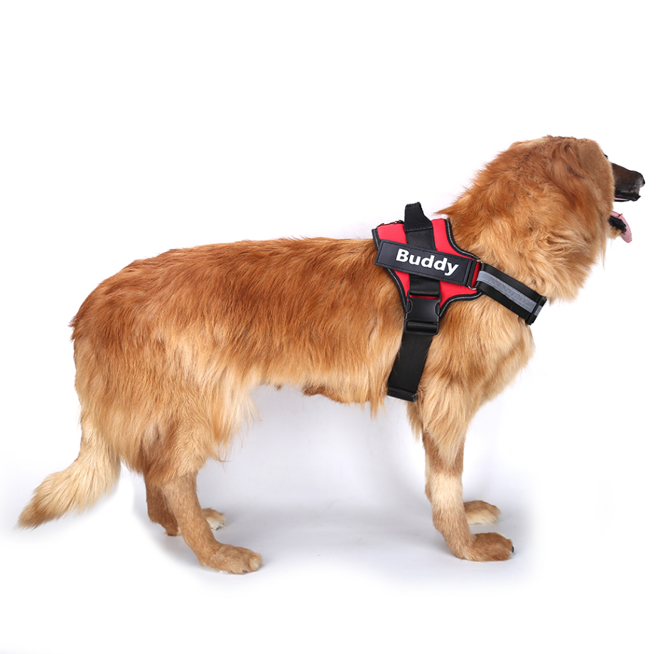 Personalized Dog Harness   Pet Harness Vest