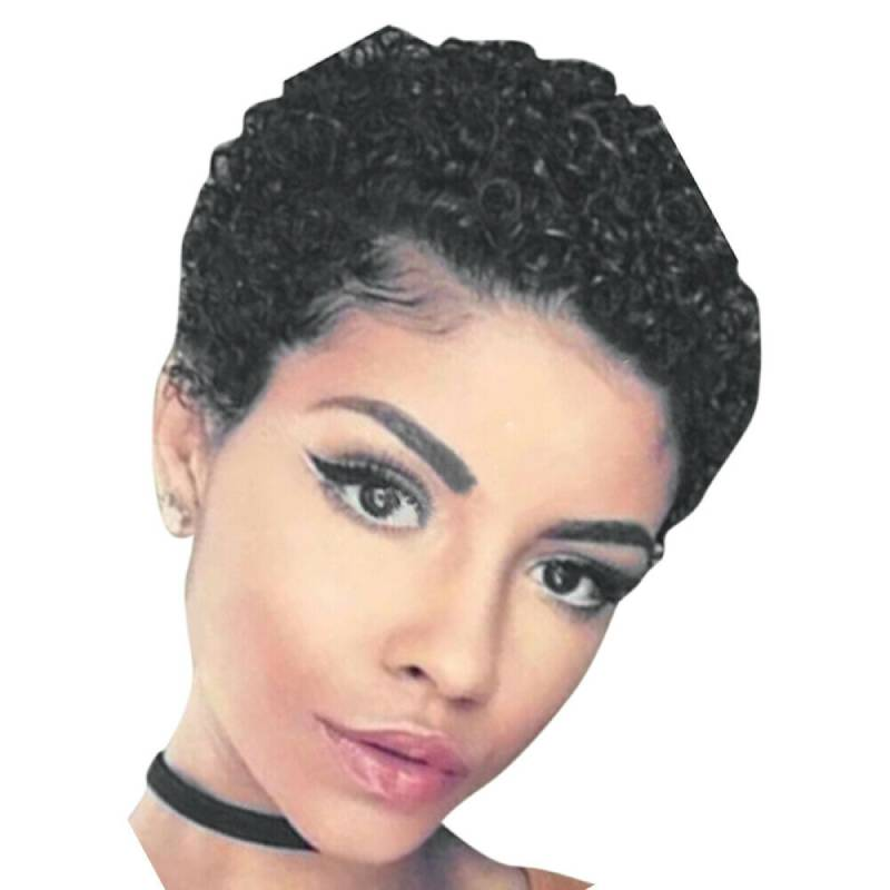 Luna S083 Women Afro Short Curly Hair Wig without Bangs