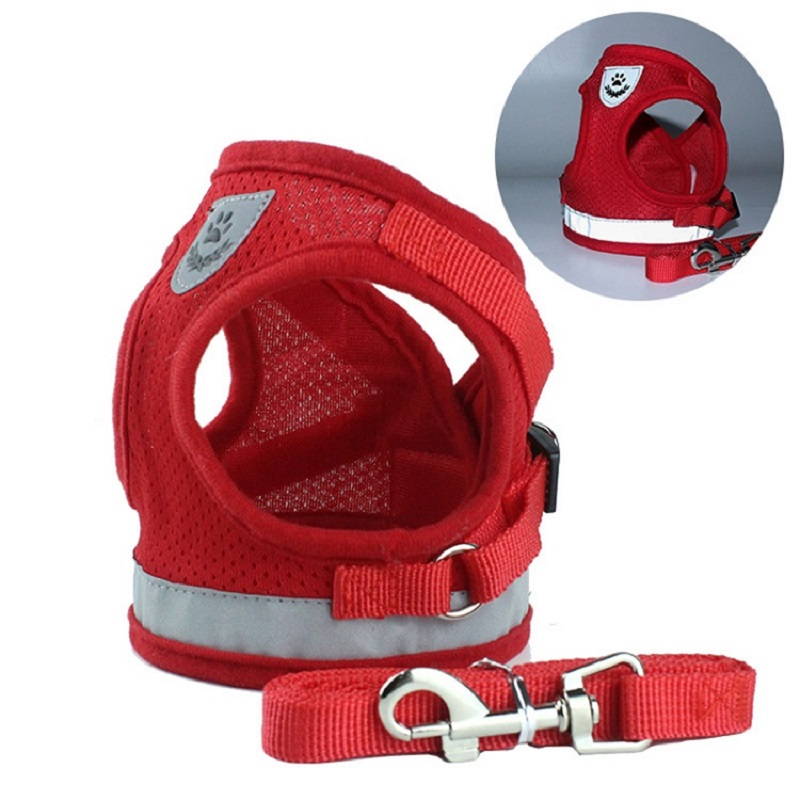 🔥Easter Promotion🔥Cat Harness and Leash for  Adventure【BUY 2 Free Shipping】