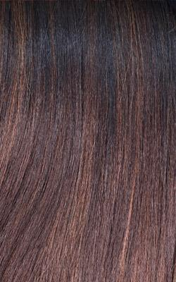 Freetress Equal Lace Front Deep Invisible L Part Wig WINK BLOSSOM