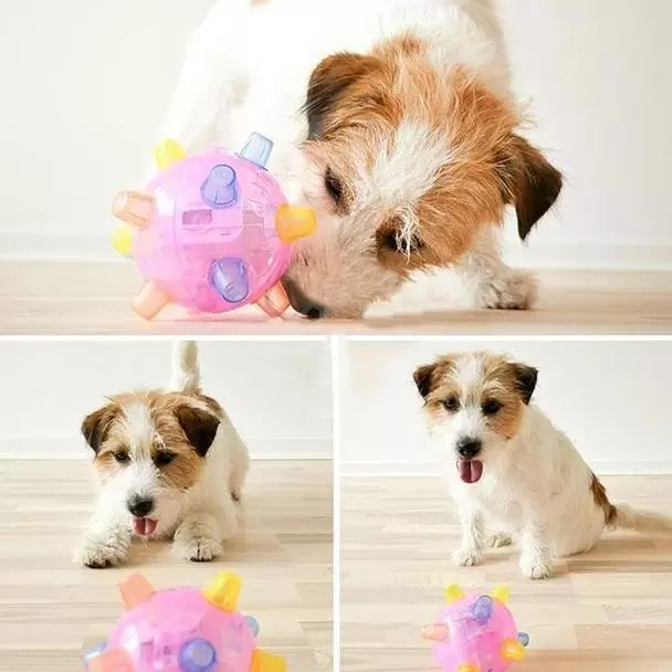70%OFF🔥JUMPING ACTIVATION BALL FOR DOGS