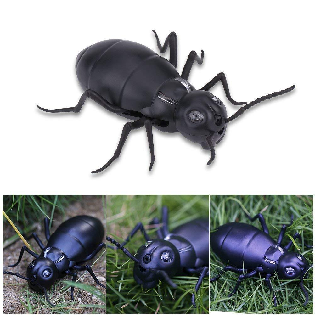 Remote Control Fake Ant
