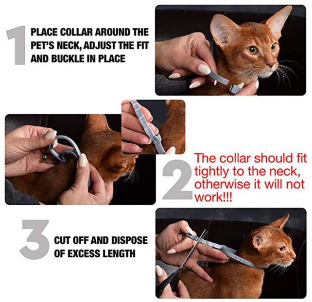 Innovative Flea And Tick Collar For Pets