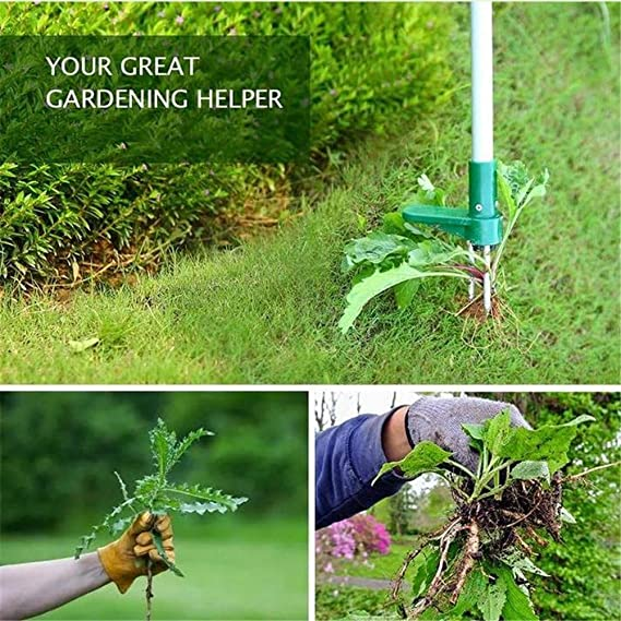 Over 39 Free Shipping🍀Portable manual weeding tool