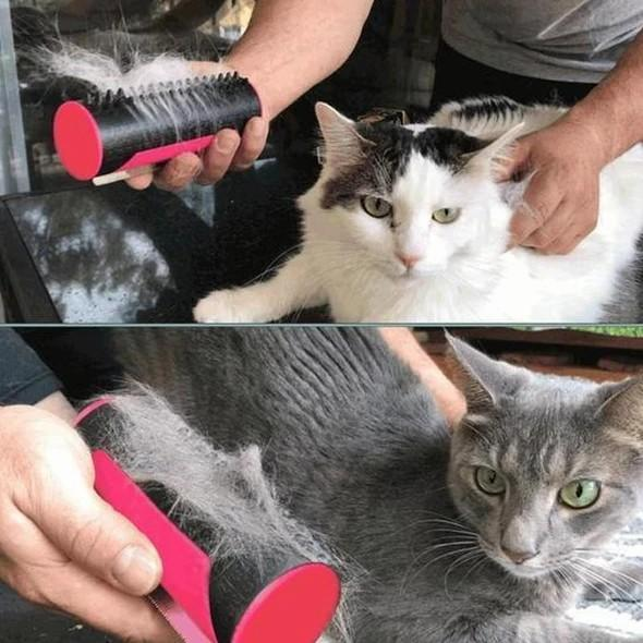 (Buy 2 Free Shipping)Clean Fur Brush For PETS