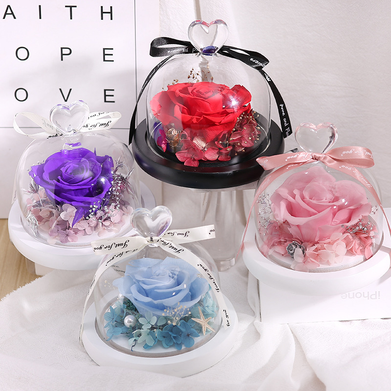 the Beauty And Beast Forever Rose Flower With Night Light in Glass Dome