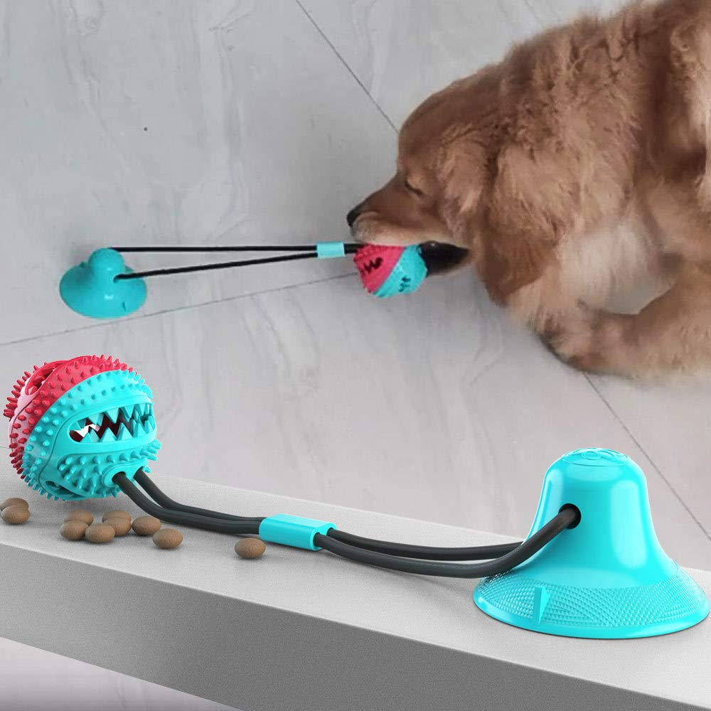 Suction Cup Molar Teeth Leaking Dog Toy