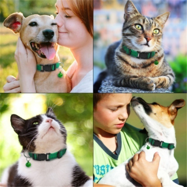 1Pcs Cat Anti Flea Mite Tick Collar Dog Neck Strap Pet Collar