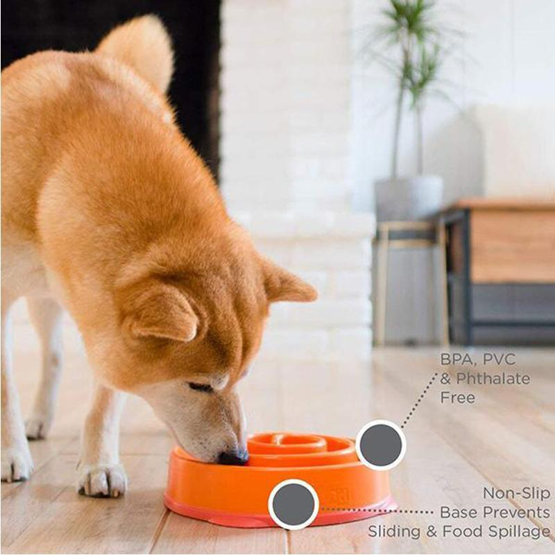 Non-Slip Slow Feeder Dog Bowl for Dogs Puppies