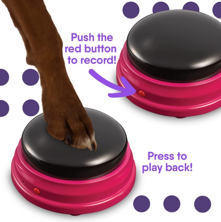 🔥Buy 3 Get 1 Free - Stuff Recordable Training Buttons for Dogs