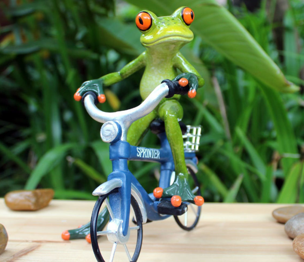 Frog riding a bicycle