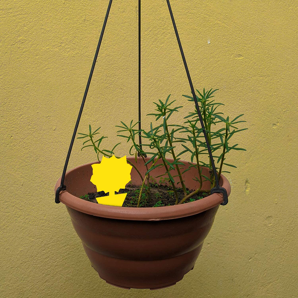 Yellow Sticky Trap Flying Insect Catcher Dual-Sided