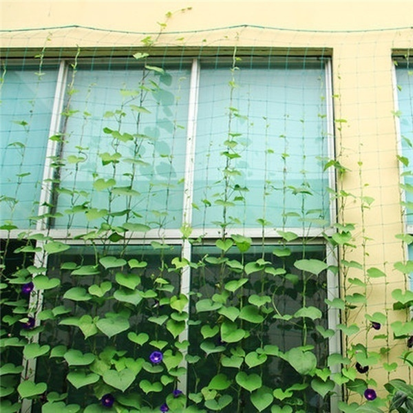 Hot 90cm/180cm/270cm/360cm Garden Green Nylon Trellis Netting Support Climbing Bean Plant Nets Grow Fence
