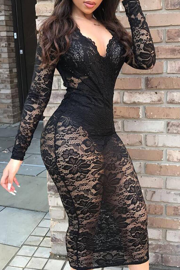 Lace Long Sleeve See-through Dress