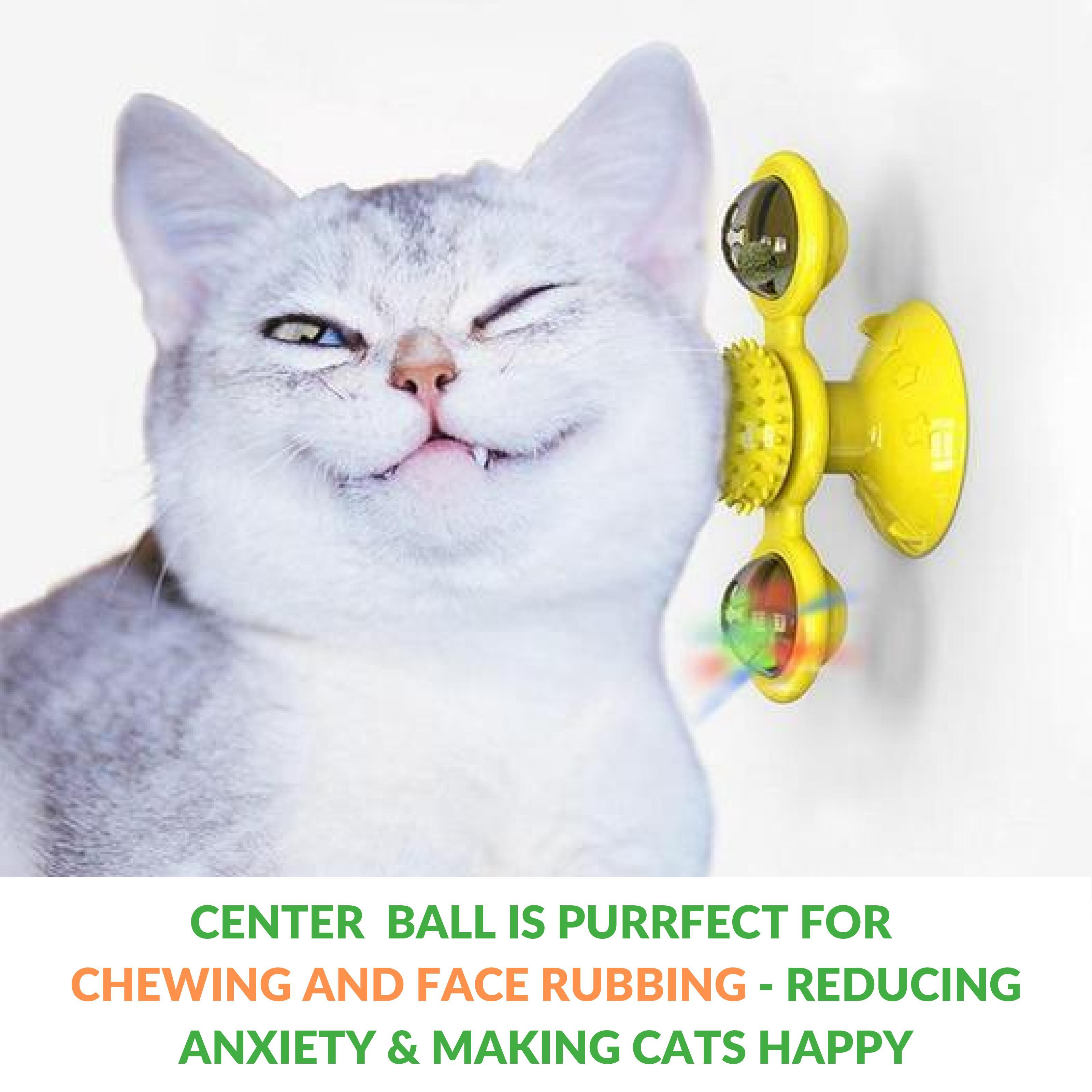 Windmill Cat Toy 3-in-1