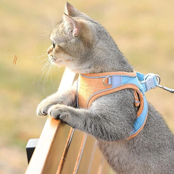 Cat  and Dog Vest Harness and Leash Set