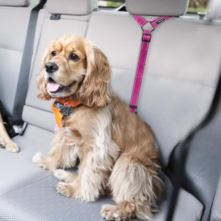 🔥(BUY 2 GET 1 FREE -Please add 3 to the shopping cart)!🔥2020 Must-Have Dog Car Seat Belt