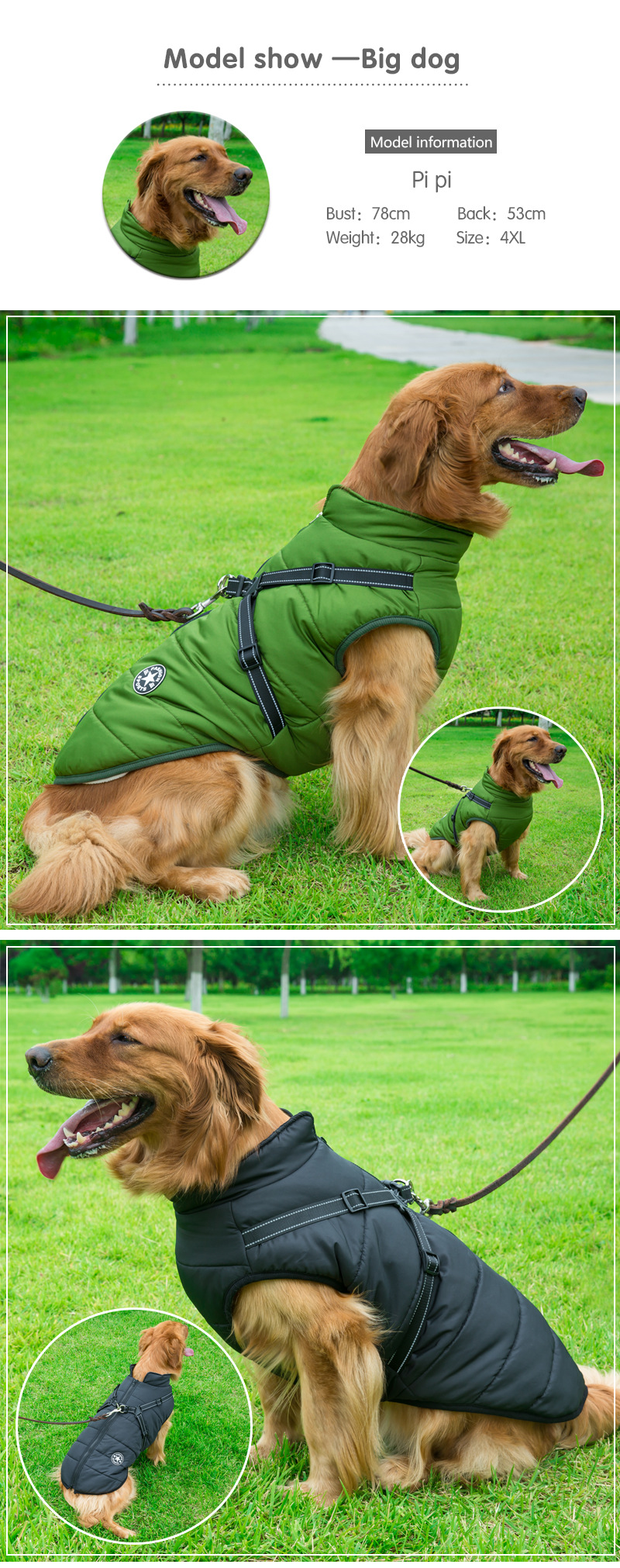Dog Winter Waterproof Jacket With Harness