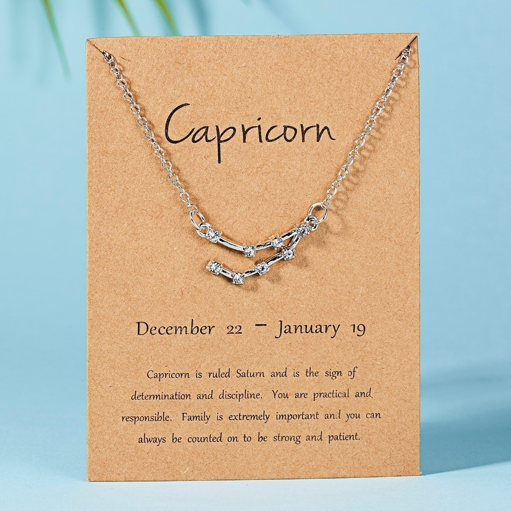 12 Star Gemini Leo Pisces Zodiac Signs Constellation Horoscope Astrology Galaxy Necklace Birthday Gift for Women Men Silver Gold Plated Choker Necklaces for Women Girls Message Card Birthday Leo Scorpion Libra Cancer Saggitarius Jewelry