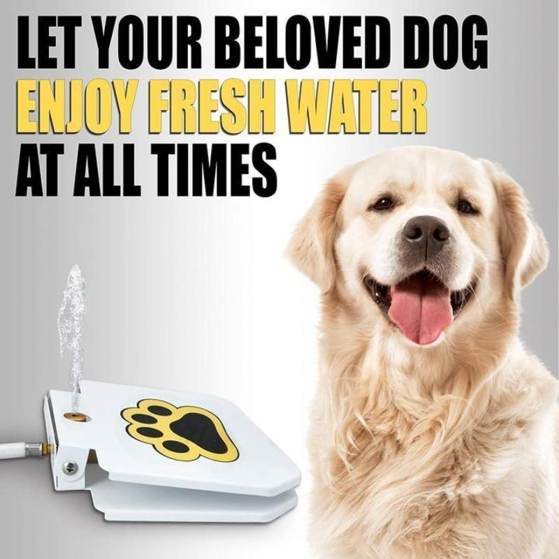 Outdoor Paw-On Clean Fresh Water Fountain Sprinkler Dog Toy