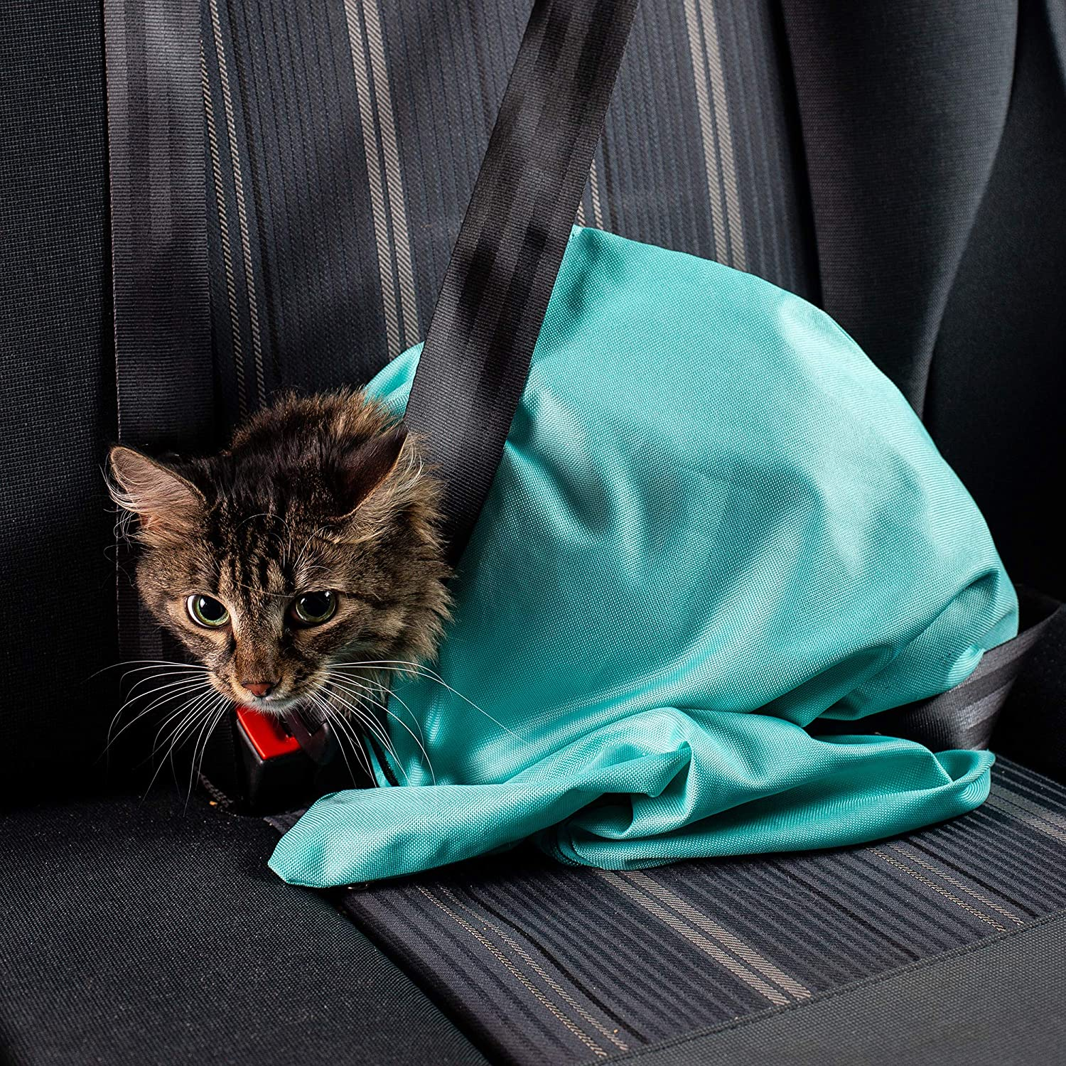 🎉Buy One And Get One FREE-Cat Carrier Pouch