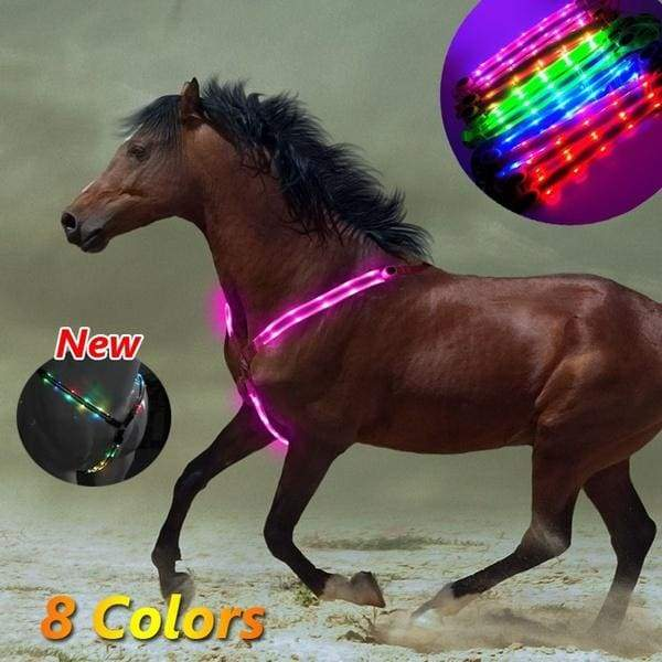 8 Colors Outdoor LED Luminous Horse Chest Belt Horse Gear Equestrian Supplies