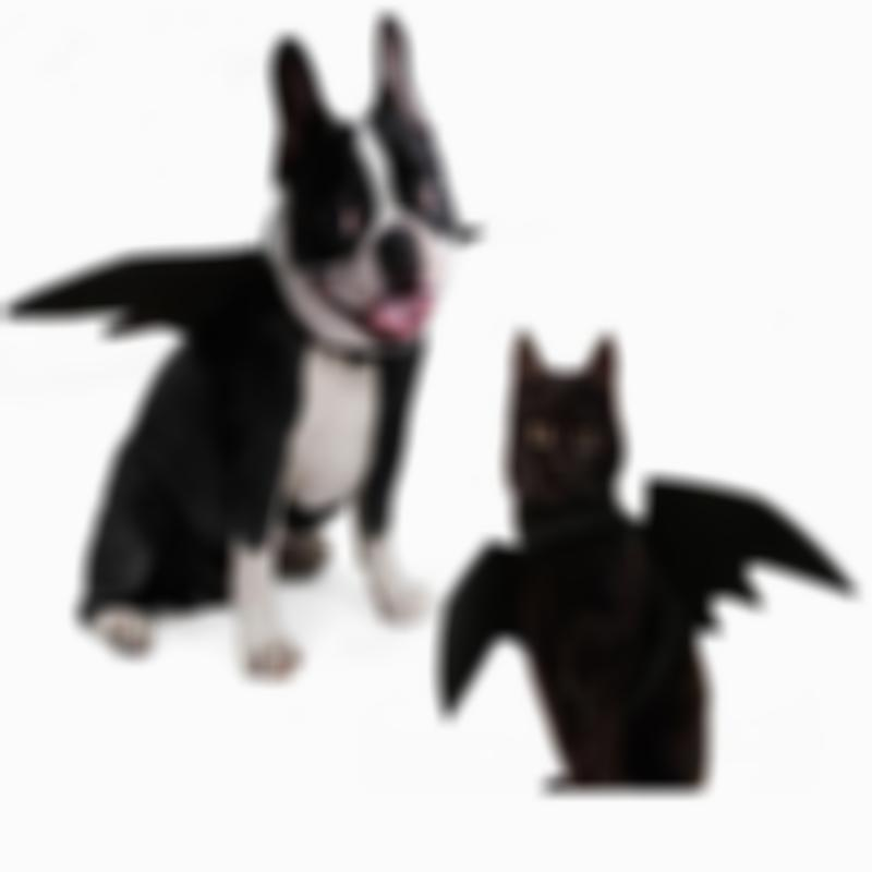 SKRTEN Soft Smooth Black Bat Wings Pet Costume for Cats/Dogs/Puppies