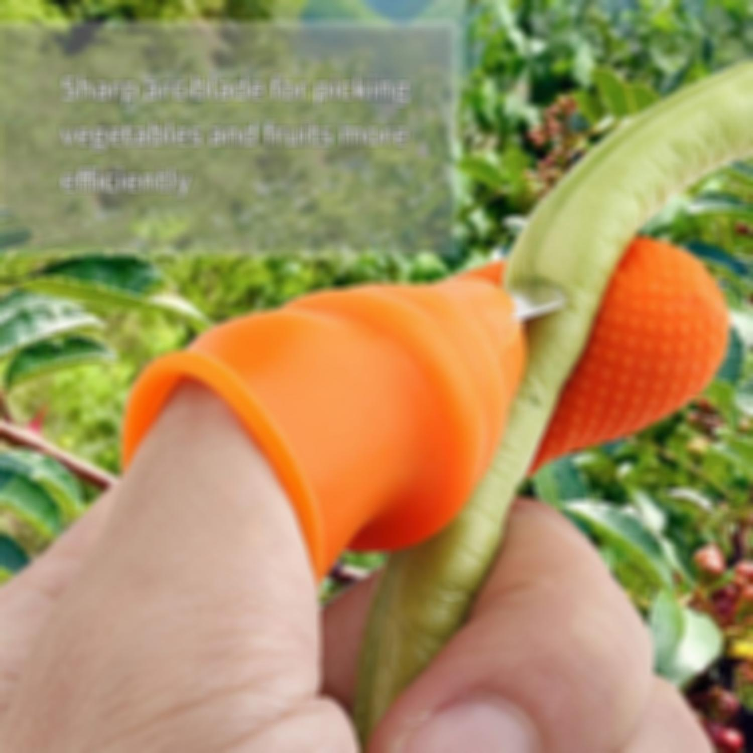 (50% Off Today)Pick vegetables, pick fruit thumb knife