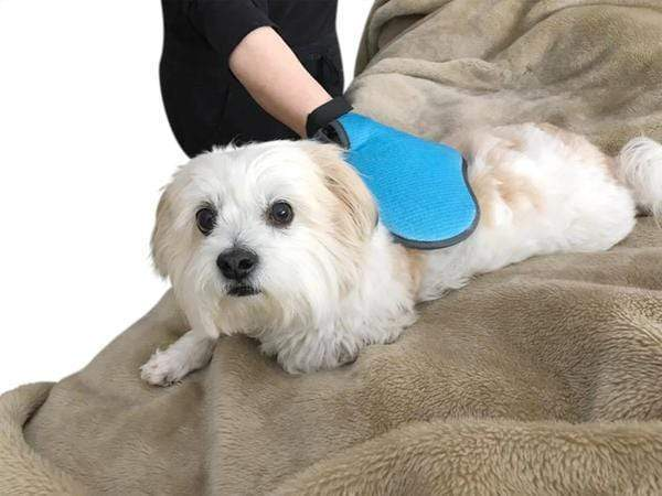 2-In-1 Pet Deshedding And Grooming Glove