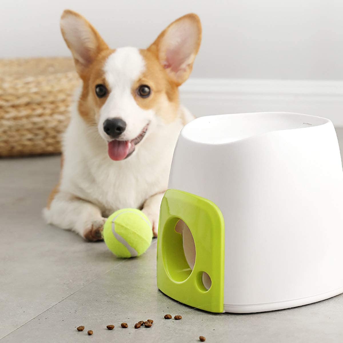 50% OFF-Automatic Interactive Dog Tennis Ball Launcher&Dog training & automatic feeding