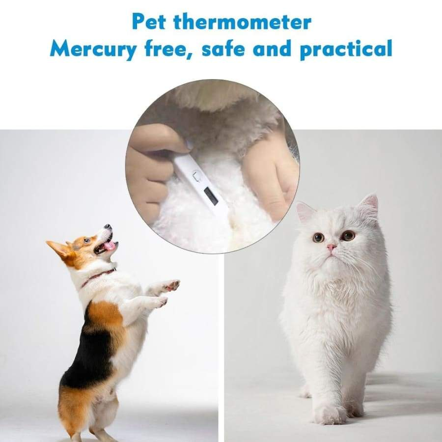 Infrared Thermometer Non-contact Measuring Forehead Temperature Gauge And Ultrasonic Nebulizer Handheld Atomizer Sprayer Energy Saving Low Voice Face Hydrating Electric Humidifier Digital Electronic Thermometer LCD Screen
