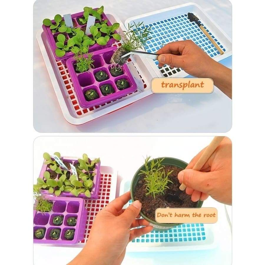 25mm 30mm Peat Pellets Seed Starting Plugs Pallet Seedling Soil Block POE for Planting and Cuttings