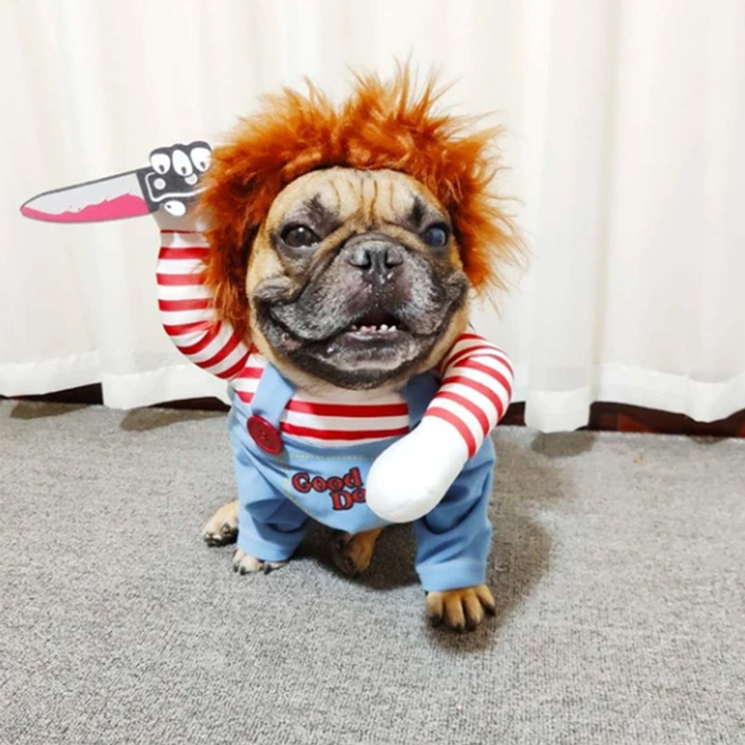 Dog Deadly Doll Costume For Halloween