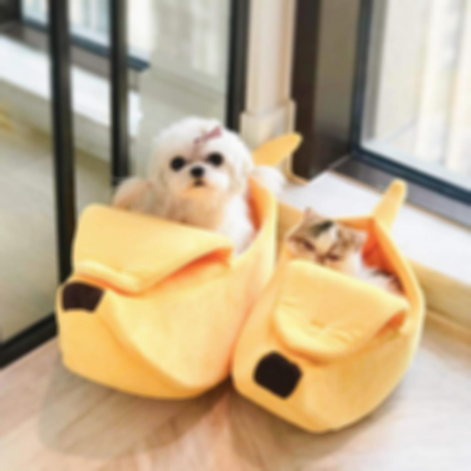 Cute Looking Banana Cat Bed
