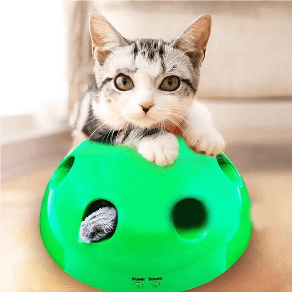 2019 New Cat Toy Pop Play-60% OFF Only Today