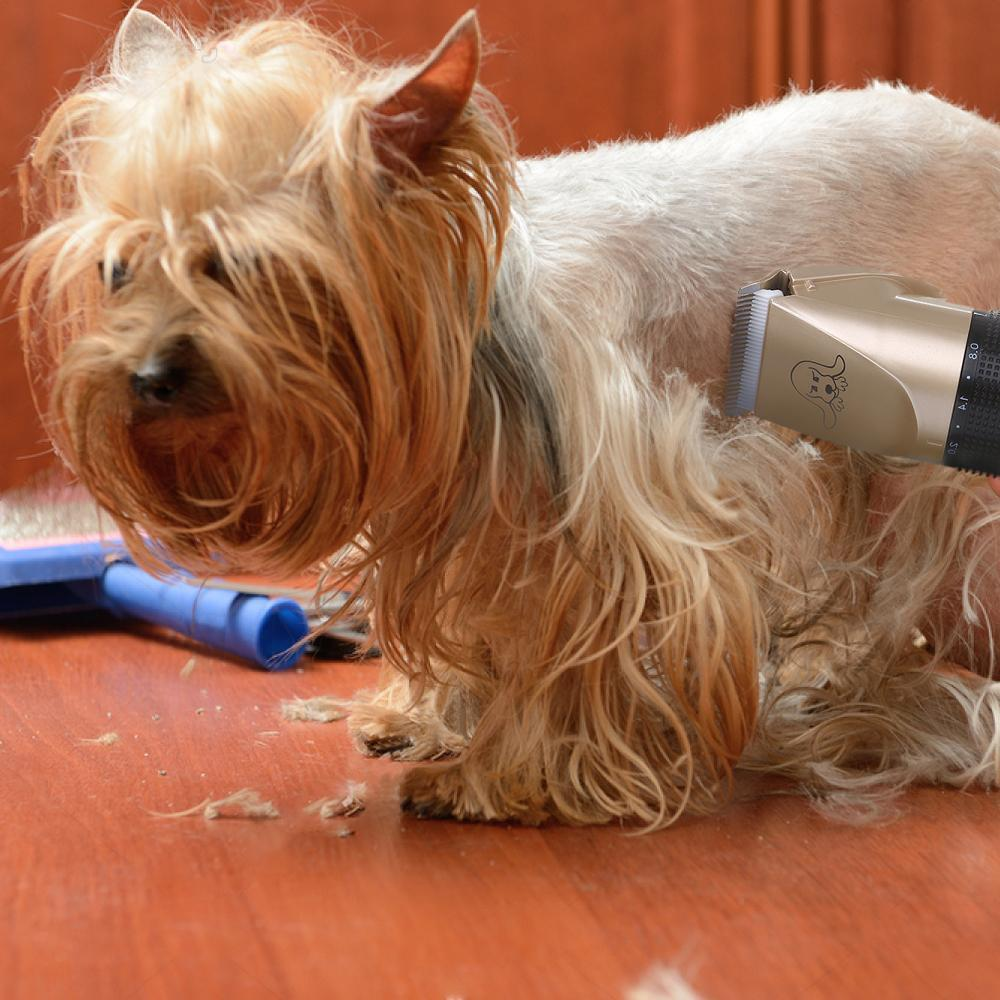 Noise-Free Design Pet Hair Clipper (BUY 2+ FOR 20% OFF)