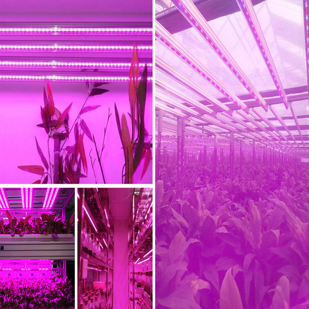 5pcs/lot T8 Tube LED Plant Grow Light Bar 60cm 90cm 120cm Full Spectrum Plant Lamp Red Blue White lighting phytolamp hydroponic cultivo greenhouse grow tent fluorescent replacement