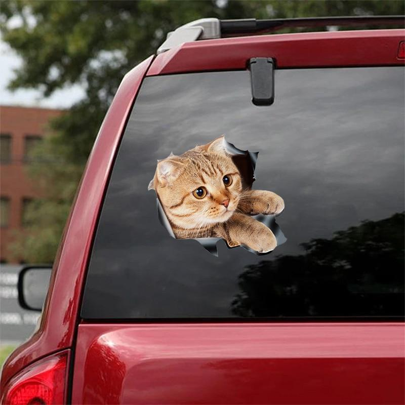 (🔥HOT SALE NOW-48% OFF)3D Cat Sticker Decal(BUY 3 GET FREE SHIPPING)
