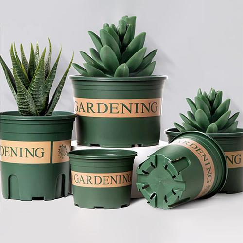 50% OFF TODAY - Fashion flower pot