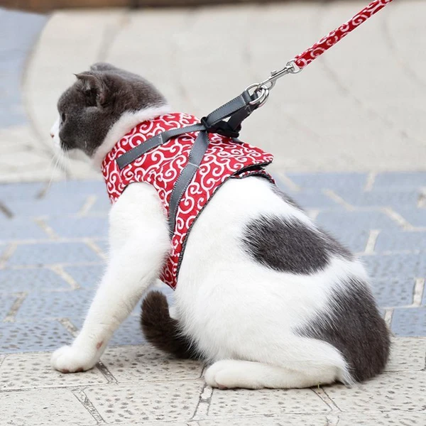 HOT SALE Cat Vest Harness and Leash Set to Outdoor Walking