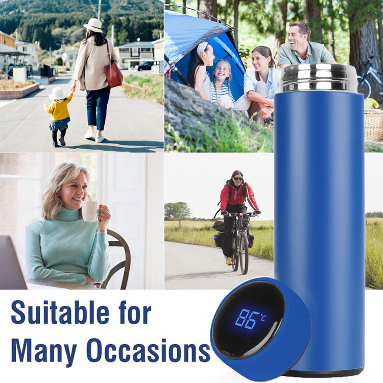 (Buy 2 Free Shipping)Temperature Display Vacuum Insulated Water Bottle